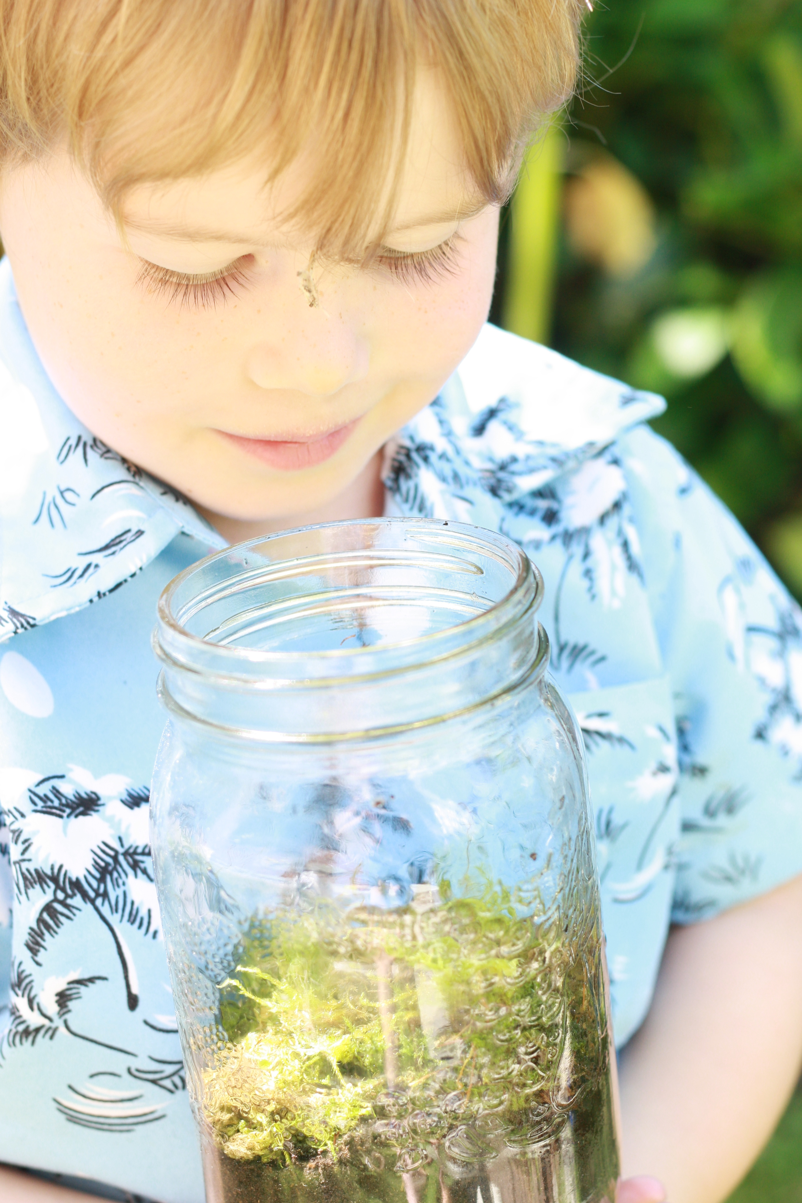Hands-On Homeschooling: Tiny Terrariums